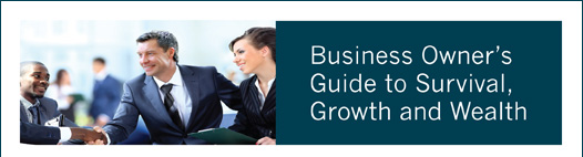 Business Owner's Guide to Survival, Growth and Wealth
